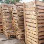 Pine firewood standard, 4 m2 Home 1,200.00